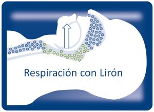 Accion-Liron-PAINT