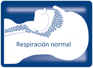 Respiracion normal Liron